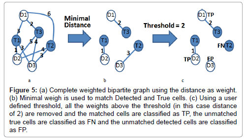 analytical-bioanalytical-techniques-Complete-weighted-bipartite-graph