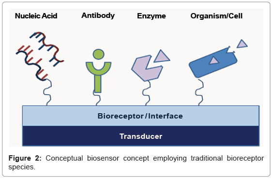 analytical-bioanalytical-techniques-Conceptual-biosensor-employing