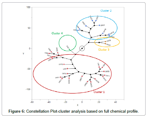 analytical-bioanalytical-techniques-Constellation-Plot-cluster-analysis