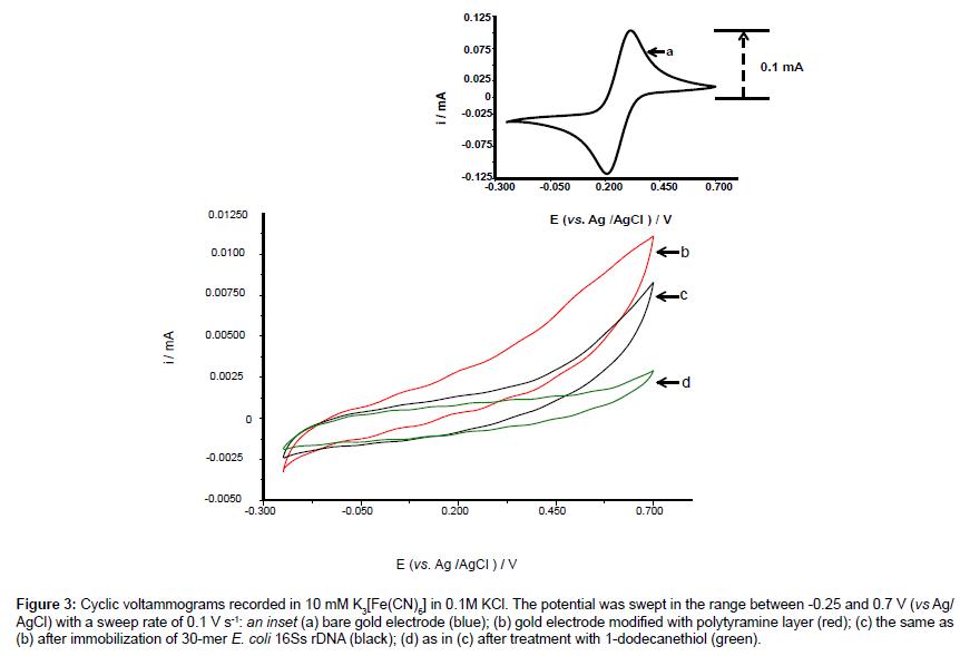 analytical-bioanalytical-techniques-Cyclic-voltammograms