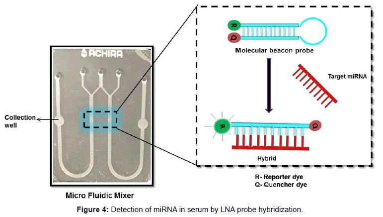 analytical-bioanalytical-techniques-Detection-serum-hybridization
