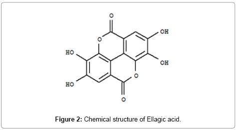 analytical-bioanalytical-techniques-Ellagic-acid