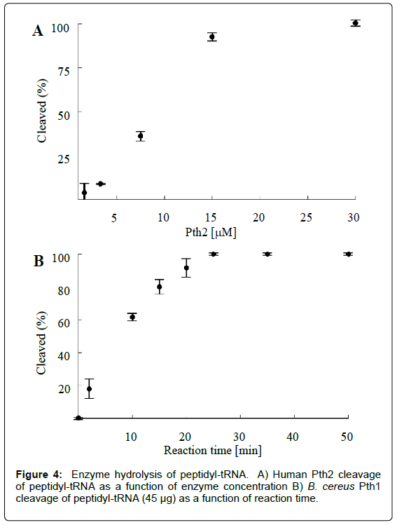 analytical-bioanalytical-techniques-Enzyme-hydrolysis-peptidyl