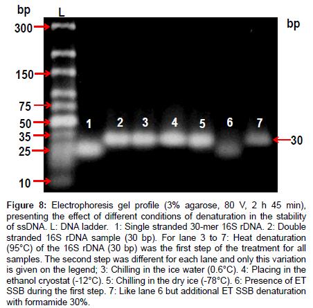 analytical-bioanalytical-techniques-Heat-denaturation