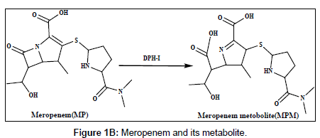 analytical-bioanalytical-techniques-Meropenem