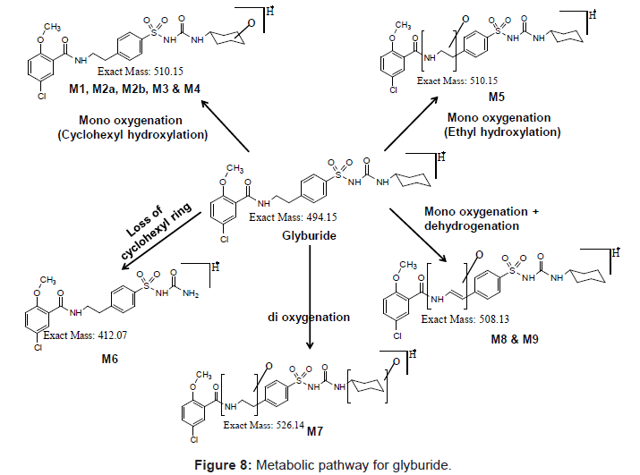 analytical-bioanalytical-techniques-Metabolic-pathway-glyburide