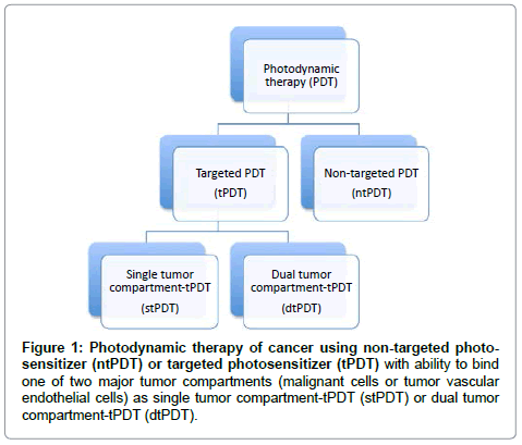 analytical-bioanalytical-techniques-Photodynamic-therapy-cancer