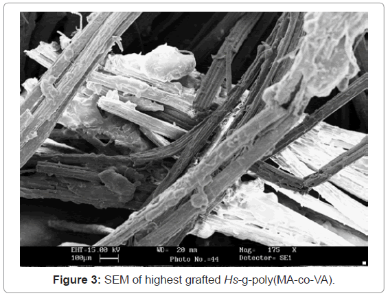 analytical-bioanalytical-techniques-SEM-highest-grafted