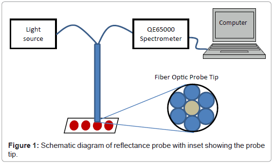 analytical-bioanalytical-techniques-Schematic-reflectance-probe
