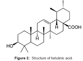 analytical-bioanalytical-techniques-Structure-betulinic-acid