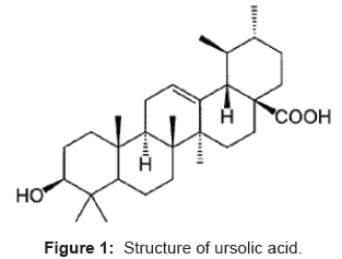 analytical-bioanalytical-techniques-Structure-ursolic-acid