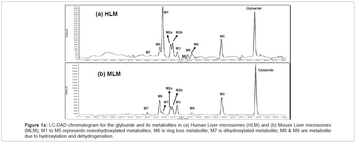 analytical-bioanalytical-techniques-chromatogram-glyburide-metabolites