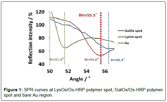 analytical-bioanalytical-techniques-curves-polymer-region