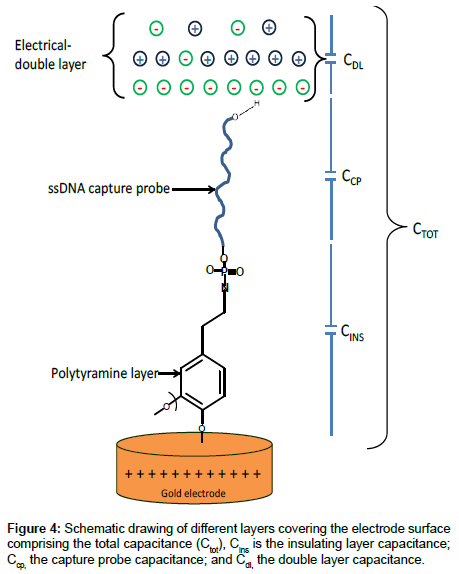 analytical-bioanalytical-techniques-electrode-surface
