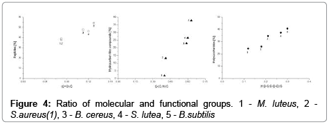 analytical-bioanalytical-techniques-functional-groups