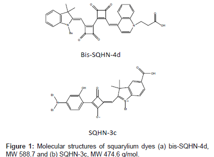 analytical-bioanalytical-techniques-squarylium-dyes
