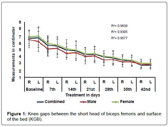 anatomy-physiology-Knee-gaps-between