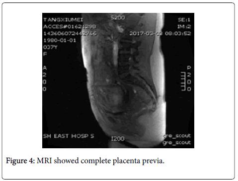 anatomy-physiology-MRI