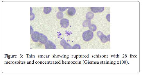 ancient-diseases-preventive-remedies-ruptured-schizont