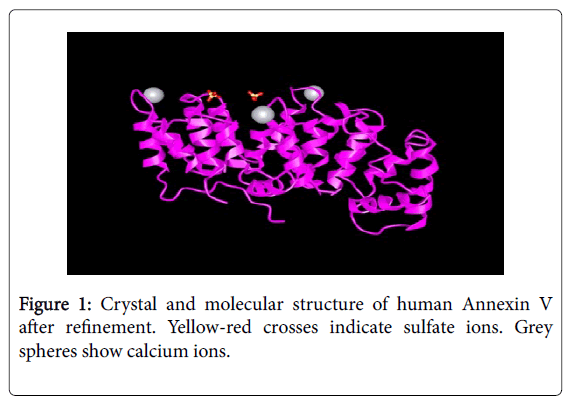 andrology-Crystal-molecular-structure