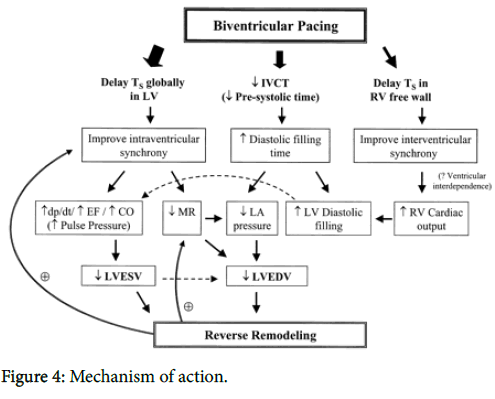 anesthesia-clinical-research-Mechanism-action