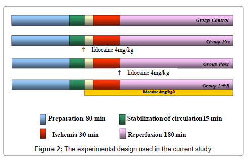 anesthesia-clinical-research-experimental-design