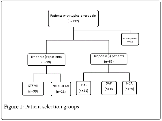 angiology-Patient-selection-groups