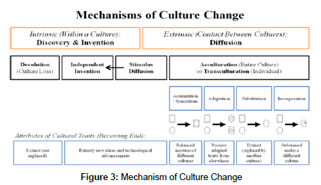 anthropology-Culture-Change
