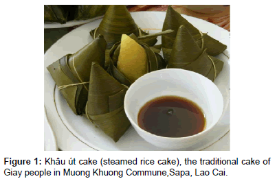 anthropology-steamed-rice-cake