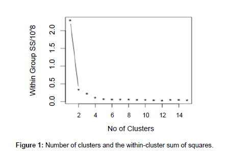 anthropology-within-cluster-sum