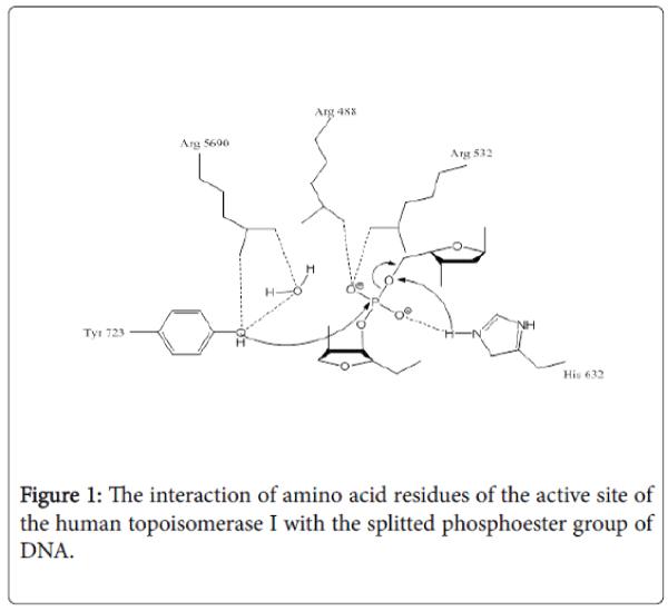 antivirals-antiretrovirals-amino-acid