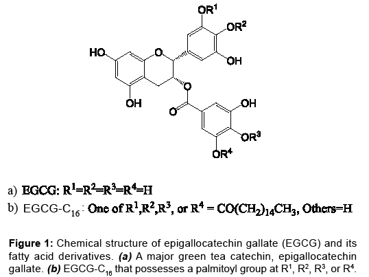 antivirals-antiretrovirals-chemical-structure-epigallocatechin