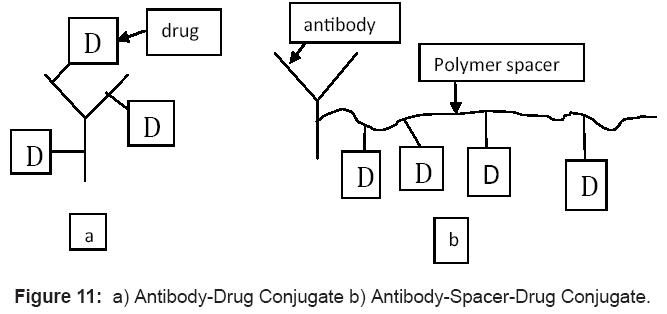 antivirals-antiretrovirals-conjugate