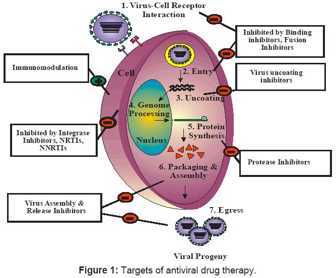 antivirals-antiretrovirals-drugtherapy