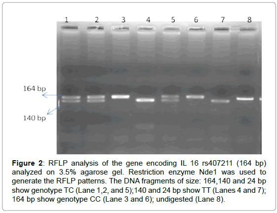 antivirals-antiretrovirals-gene-encoding-agarose