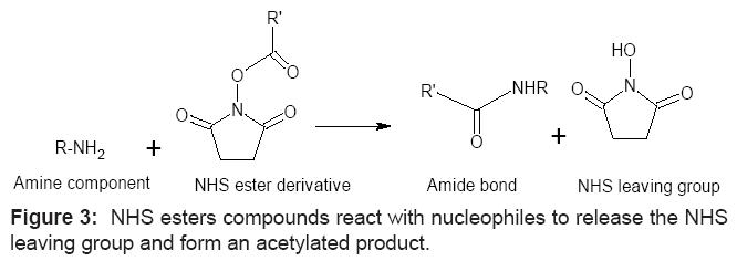 antivirals-antiretrovirals-nucleophiles