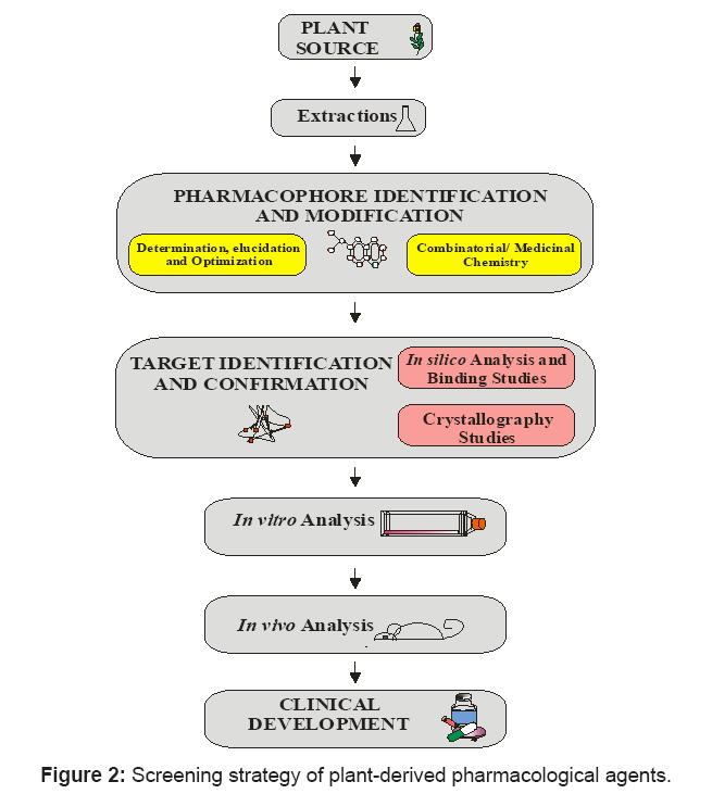 antivirals-antiretrovirals-pharmacological