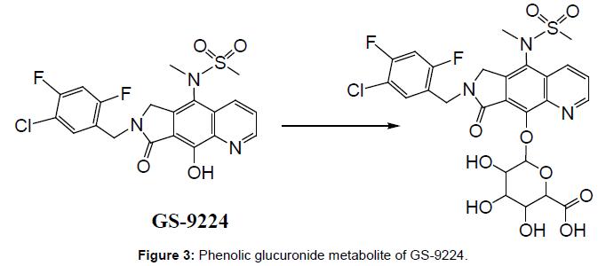 antivirals-antiretrovirals-phenolic-glucuronide