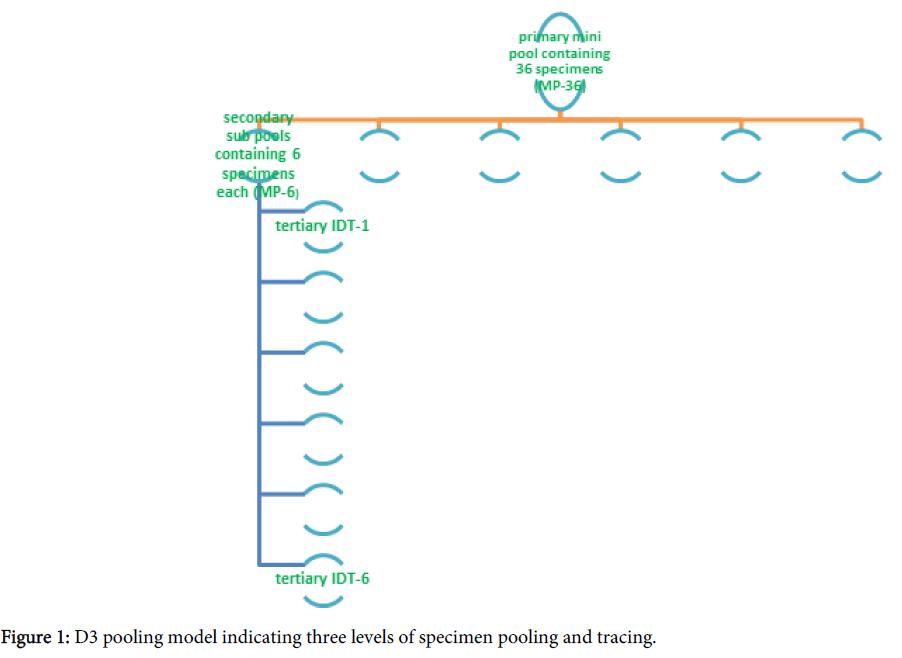 antivirals-antiretrovirals-pooling-model-specimen