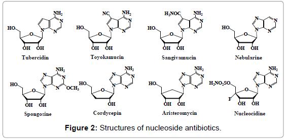 antivirals-antiretrovirals-structures-antibiotics