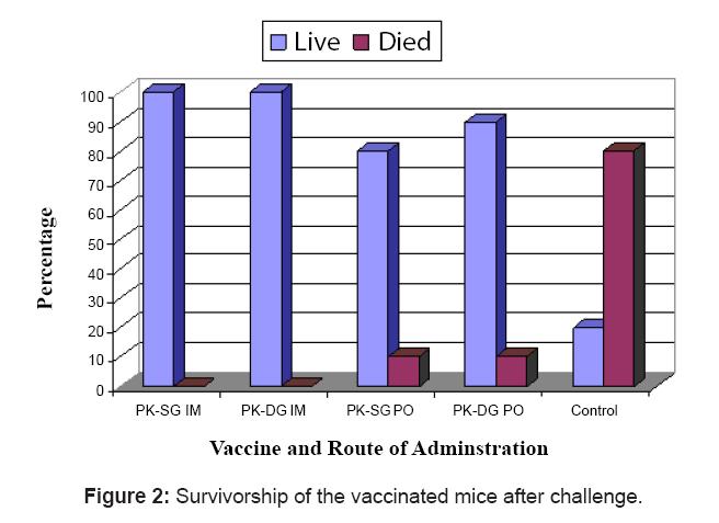 antivirals-antiretrovirals-survivorship