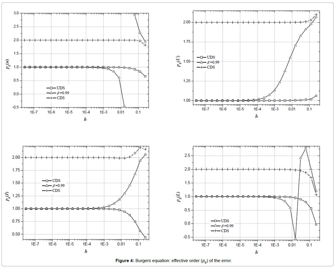 applied-computational-mathematics-burgers-equation-effective