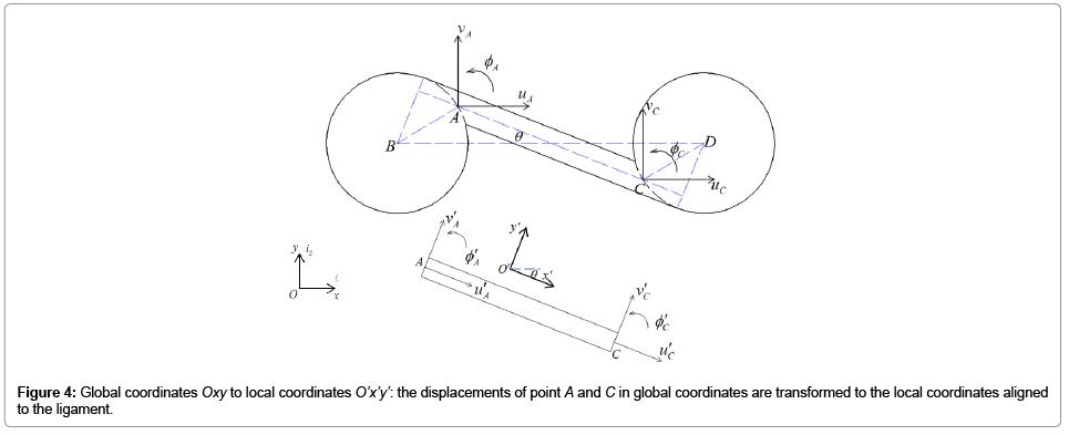 applied-mechanical-engineering-Global-coordinates