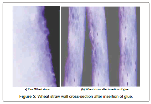applied-mechanical-engineering-Wheat-straw-wall-cross-section