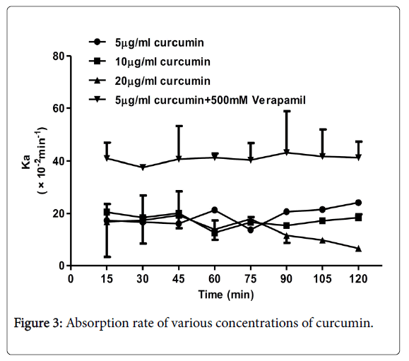 applied-pharmacy-concentrations-curcumin