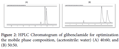 applied-pharmacy-glibenclamide-optimization
