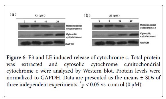 applied-pharmacy-release-cytochrome
