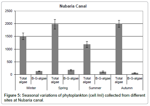 aquaculture-research-development-Nubaria-canal