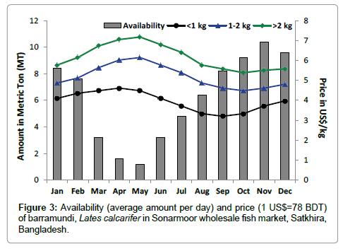 aquaculture-research-development-Sonarmoor-wholesale-fish-market-Satkhira