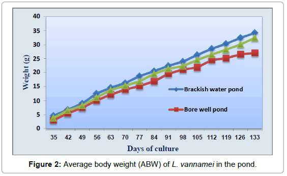 aquaculture-research-development-average-body-weight